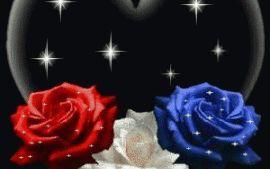 Rosas animadas con corazon