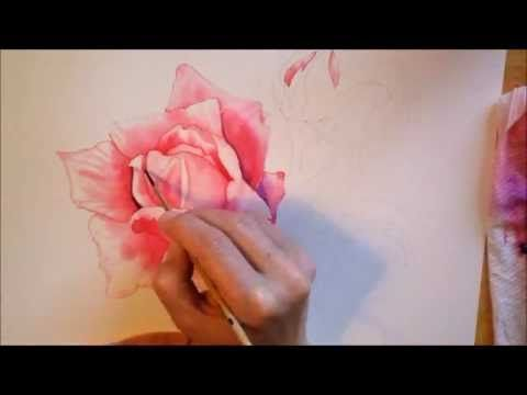 Rose - watercolor paiting process Time Lapse