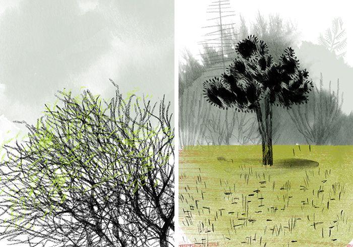 Angie Wang, Illustratress