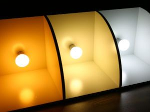 Best Natural Light Bulbs For Photography