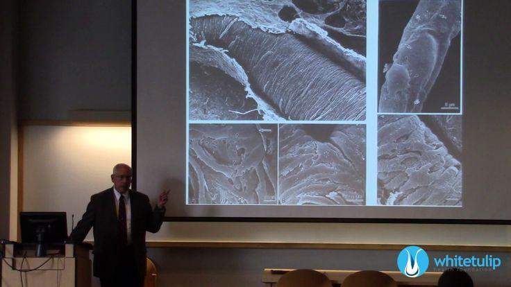 Father of MENSC - Mesenchymal Stem Cells and Regenerative Medicine - YouTube