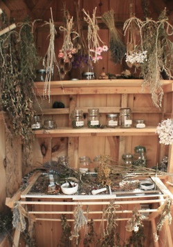 Herbs and oils for healing and pleasure.