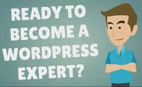 Hire #WordPress #Expert Developer for WordPress Services https://www.amazines.com/article_detail.cfm?articleid=5864163
