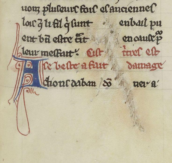 Stitched parchment
