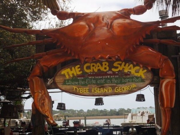 tybee island cougar women We've got tybee island beach and parking info to help you know where to go   restaurants, shops, bars, hotels and motels are all just a few steps away from.