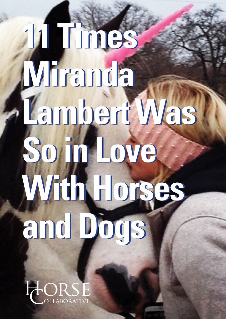 Earlier this summer, country music dynamo Miranda Lambert made headlines after announcing the breakup of her marriage to fellow country star, Blake Shelton.