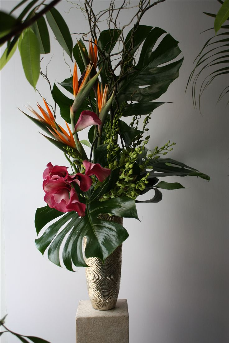 Tall tropical flower arrangement. Composition of monstera leaves, birds of paradise, green dendrobium orchids, calla lilies, and curly willow in an accent decor vase.