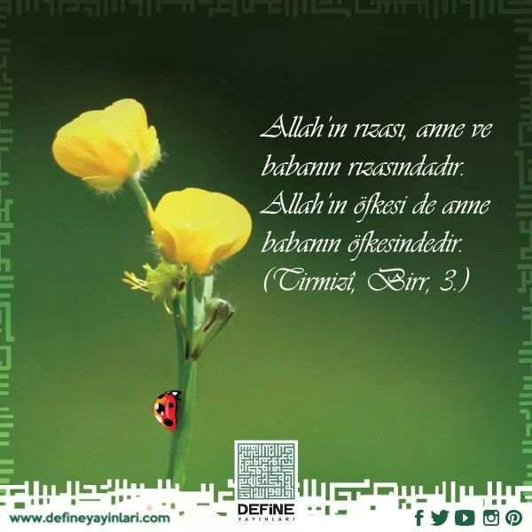 Haftanin hadisi... #hadis #defineyayinlari #define #yayin #islam #ayet #anne #baba #hadisiserif #kuran #kitap
