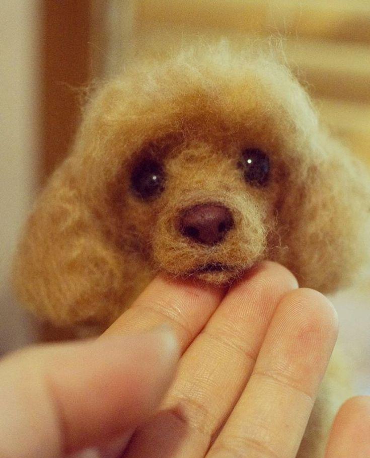 Amazing Needle felting wool dog (Via @by_leejang)