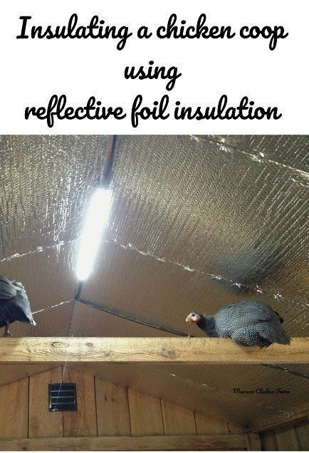 How to insulate a chicken coop quickly and easily using rolls of insulation and a staple gun. #chickencoopideas