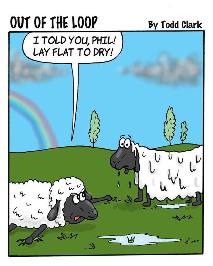 """Yarn humour - """"I told you, Phil!  Lay flat to dry!"""""""