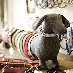 Dog Collar display