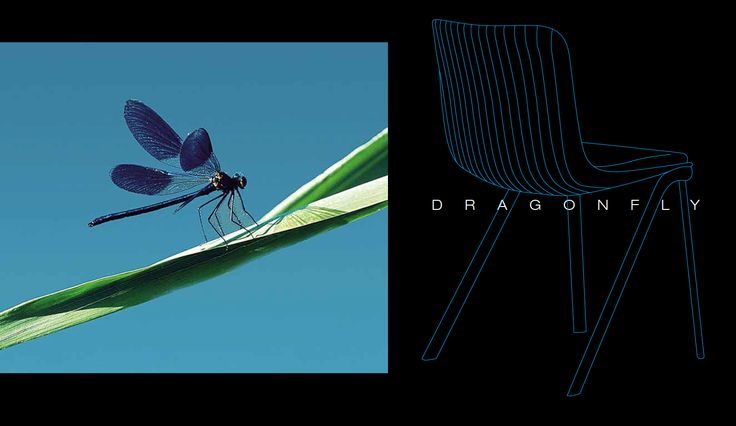 Nature is often our muse. Odo Fioravanti was inspired by real dragonflies to design the chair that satisfy both aesthetic and technical requirements: #Dragonfly.