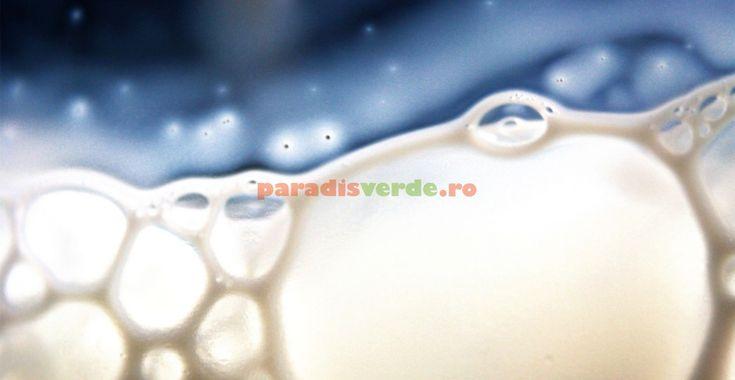 DOVEDIT ȘTIINȚIFIC: laptele e un remediu formidabil împotriva manei! | Paradis Verde