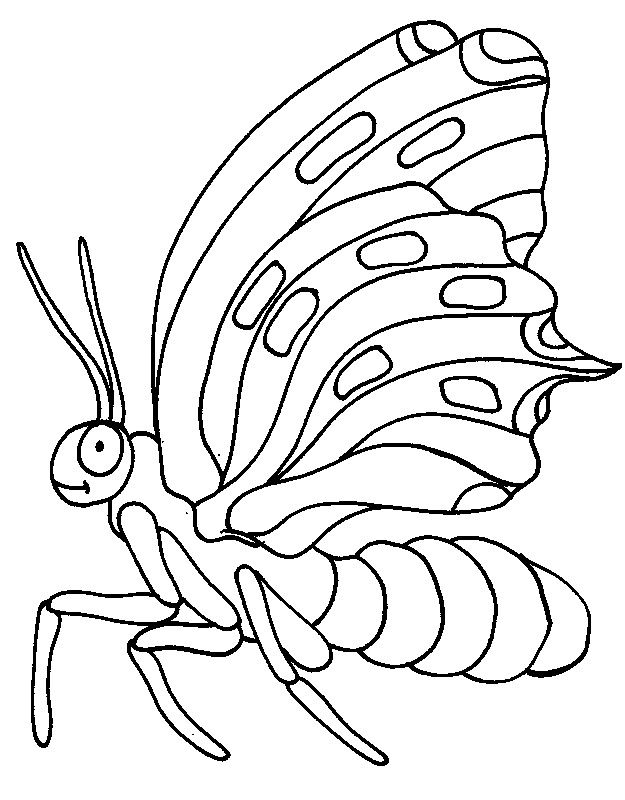 Animals Coloring Pages 105