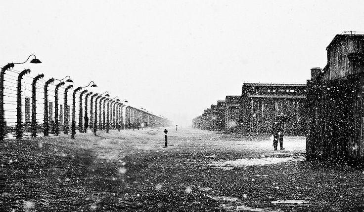 Heavy rain at the Auschwitz II-BIrkenau site.