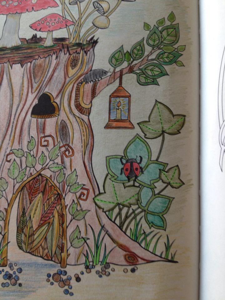 Detail Johanna Basford,colours by me