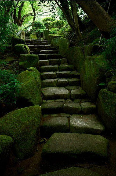 Mossy stairs to Hōkoku-ji Temple in Kamakura, Japan