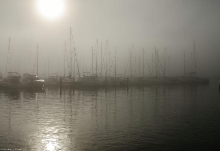 Niebla en la marina
