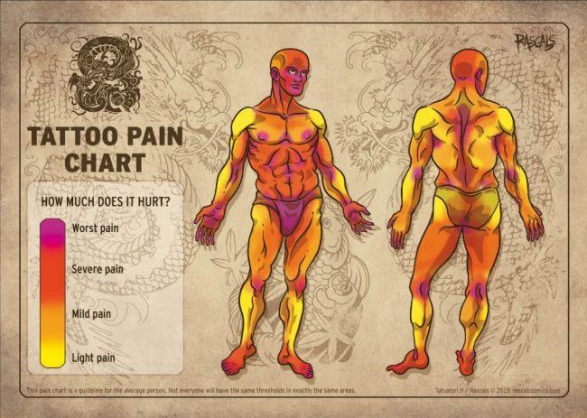17 best ideas about Tattoo Pain Chart on Pinterest