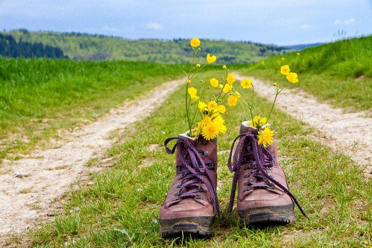 #CaminodeSantiago, la mejor manera de conocer nuestro país desde las mismas raíces.  www.caminodesantiagoreservas.com