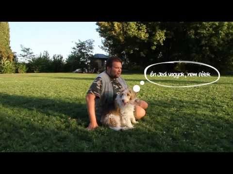 KutyaDuma - IX.rész (Villámlás, mennydörgés, tűzijáték) (Dog-Speech) - YouTube