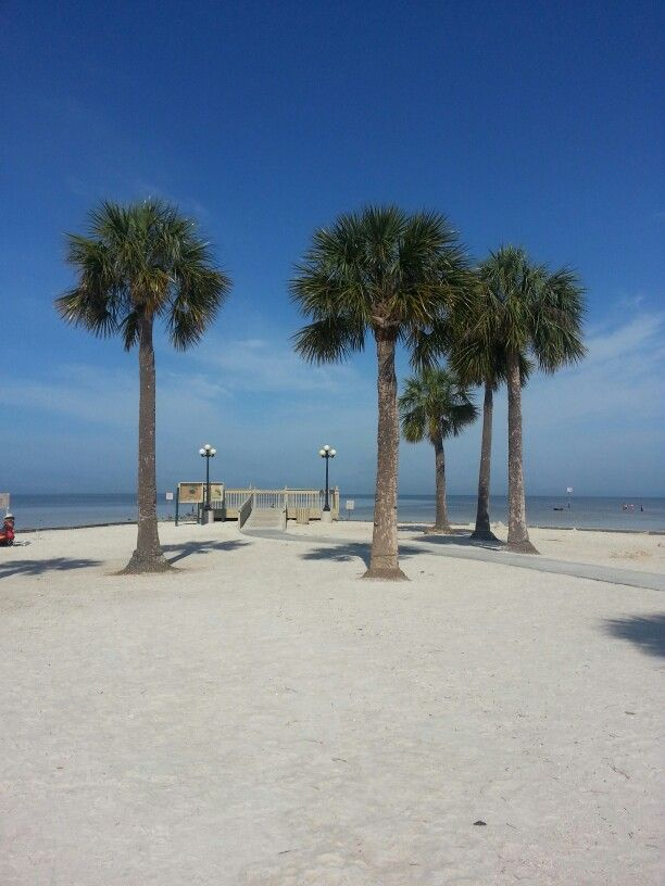 Best 25 spring hill florida ideas on pinterest pine for Best tropical beach vacations