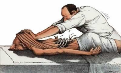agree or disagree, more for  allowing one to think: Does Fascia Matter?  also mentions peizoelectricity