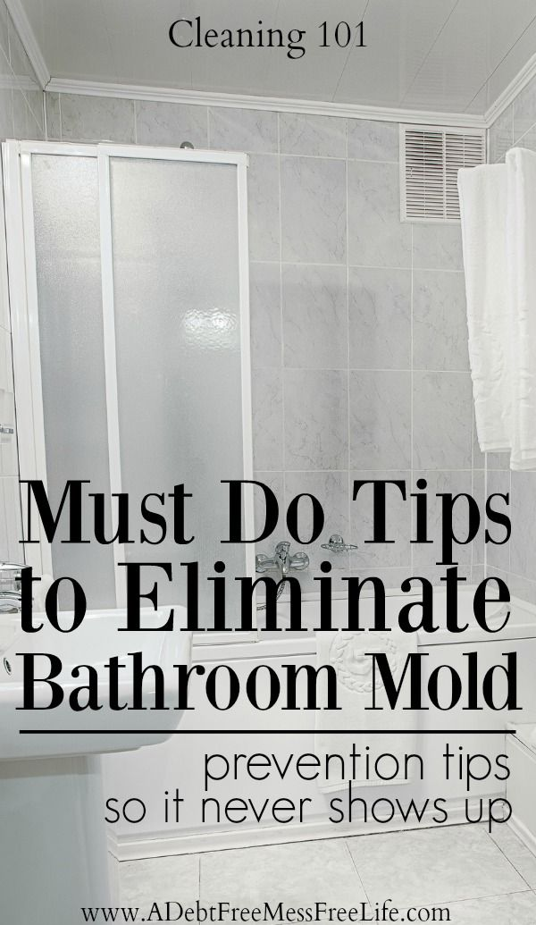 cleaning spring cleaning house home tips strategies hacks shower - How To Get Rid Of Bathroom Mold