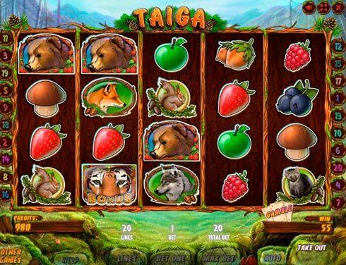 Игровой автомат на деньги в казино Вулкан Taiga.  Игровой автомат Taiga посвящён хвойным лесам и их обитателям. Начав играть в него в казино Вулкан, вы сможете заработать солидные суммы реальных денег и познакомиться с миром тайги. Здесь вас ждёт не только немало инте