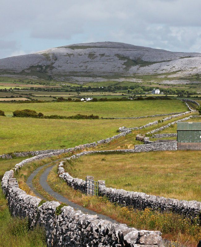 Rock-lined Road through The Burrens. The Burren is a karst-landscape region or alvar in northwest County Clare, in Ireland. It is one of the largest karst landscapes in Europe.