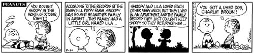 """Snoopy's a """"used"""" dog. According to a series of comic strips in 1968, at an early age, Snoopy was taken in by a girl named Lila. When she was unable to keep him, he was returned to the Daisy Hill Puppy Farm, where Charlie Brown picked him up."""