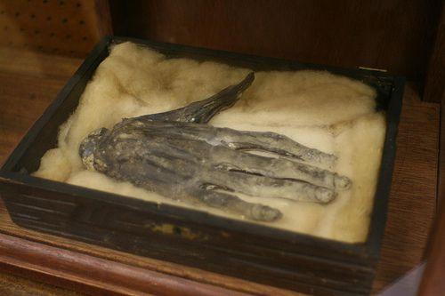 "Hand of Glory  The Hand of Glory is the dried and pickled hand of a man who has been hanged, often specified as being the left (Latin: sinister) hand, or else, if the man were hanged for murder, the hand that ""did the deed."""