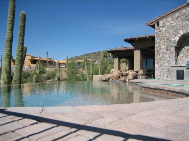 39 Best Arizona Backyards Images On Pinterest Gardens Backyards And