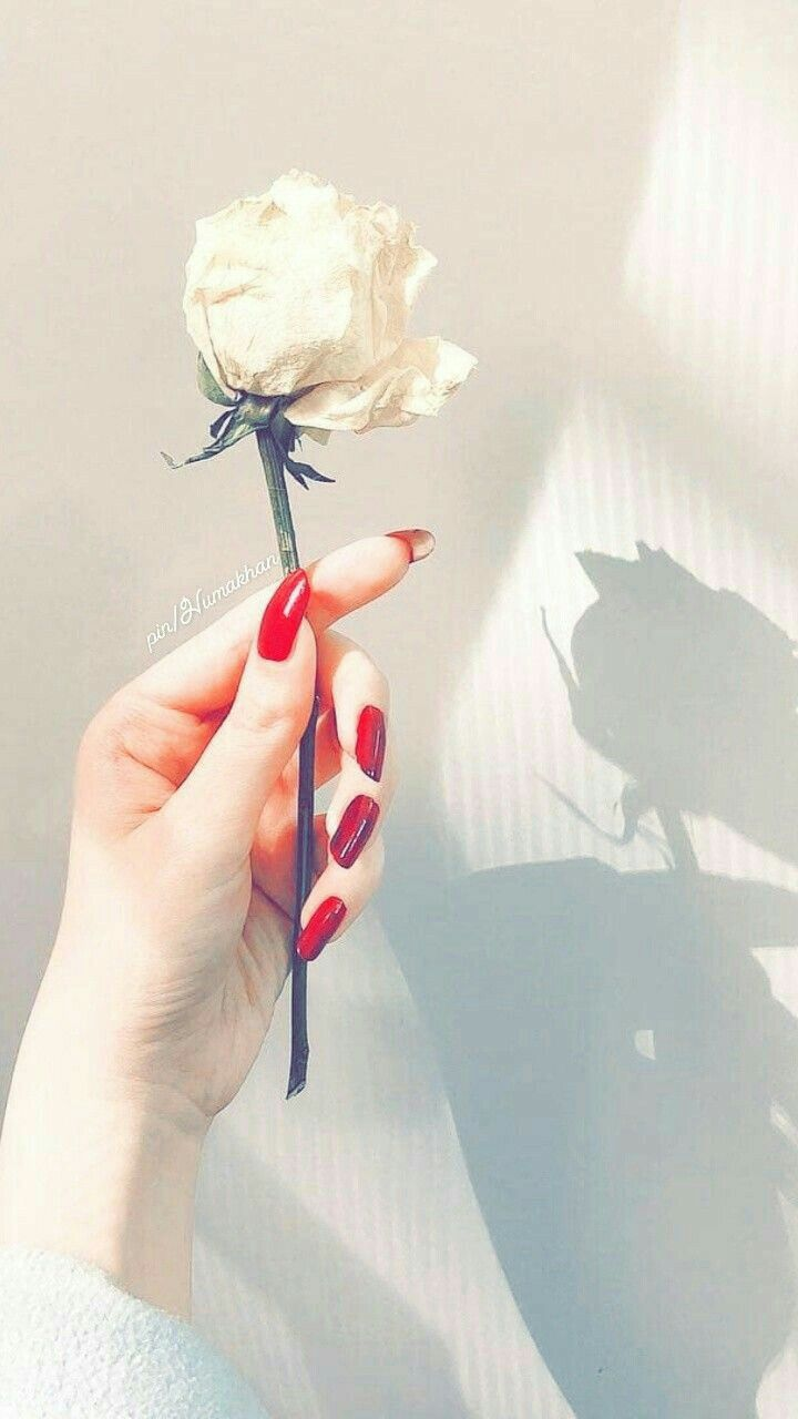 Pin By همسات الحنين On Drawings Flower Girl Photos Hand Pictures Hand Photography Red flower field anime holding kite