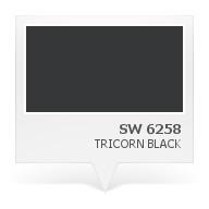 SW 6258 - Tricorn Black