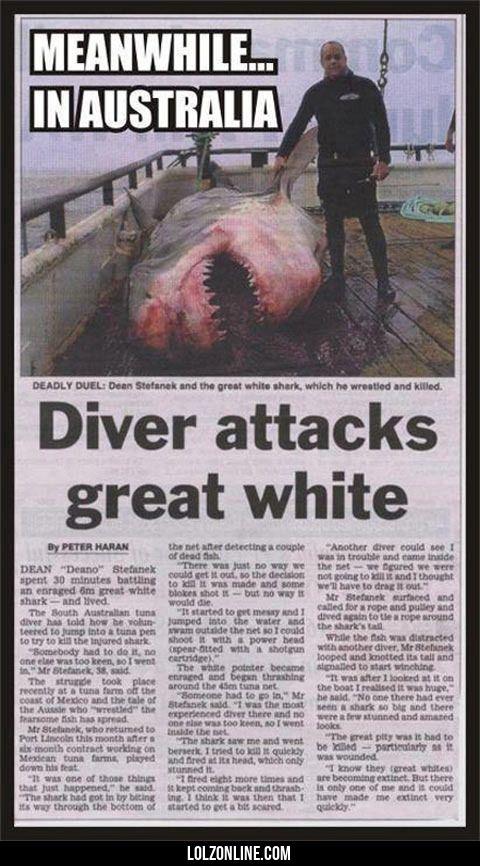 Australian Fishing… #lol #haha #funny