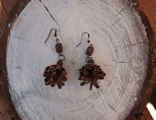 Natural pine cones earrings
