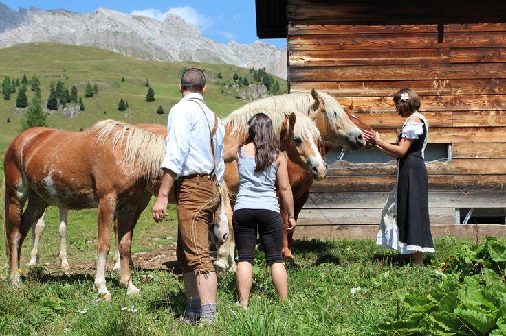 Passo San Pellegrino nel Moena, Trentino - Alto Adige