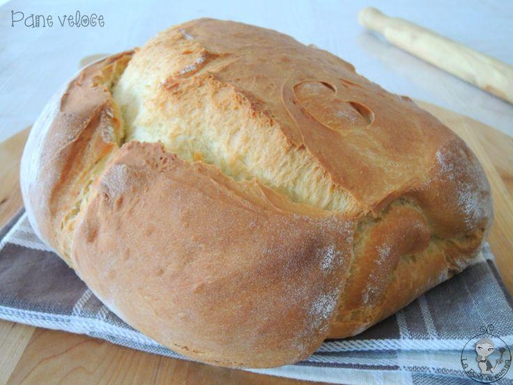 pane veloce,panificati,giallozafferano,la rica in cucina,sale,zucchero,lievito,forno,pane fatto in casa,ricetta veloce,uovo,ricetta semplice,facile,farina