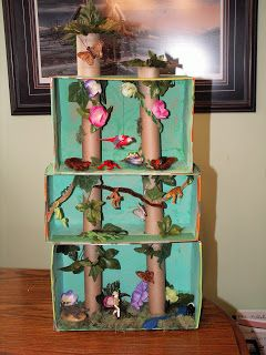 """What a clever idea!  """"Shoebox Rainforest"""" shows the layers of the rainforest."""