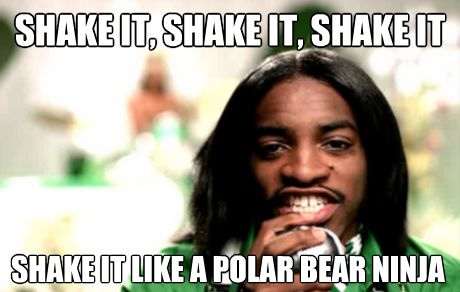 "theladymondegreen:  ""Shake it like a polar bear ninja"" OutKast - Hey Ya [Shake it like a polaroid picture]"