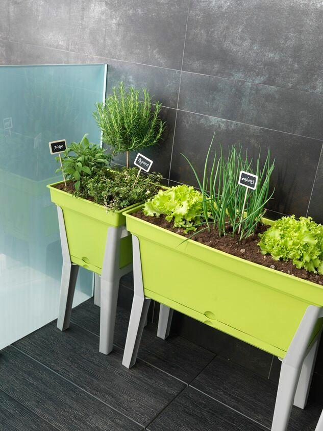 Basilio - design grow table by TeraPlast   warzywnik, stół do rozasdu
