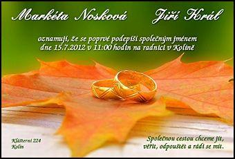Svatební oznámení č. 267