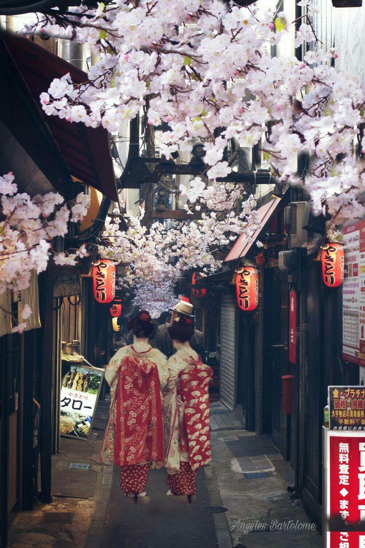 Amazing Tokyo city of Japan.