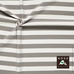 Organic cotton Jersey 2+2cm Stripes Gray/ Natural