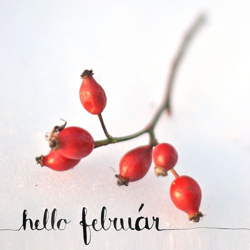 Hello February! | bold.color.glass blog | Winter Styling | calligraphy