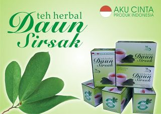 """Jual Teh Herbal Kulit Manggis SIDOARJO: TEH CELUP DAUN SIRSAK MERK """"LEAFY"""""""