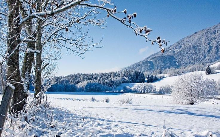 The best ski holiday bargains for next winter – why now's the time to book  http://www.telegraph.co.uk/travel/ski/advice/the-best-early-bird-ski-holiday-deals-and-offers/