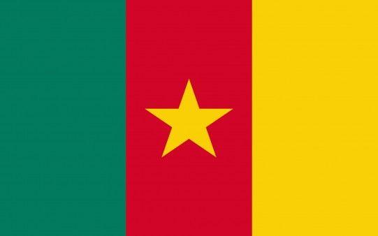 http://fondopantalla.com.es/escudos-y-banderas  Bandera de Camerún